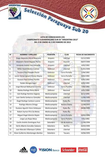 Full squad list for the 2013 Sudamericano